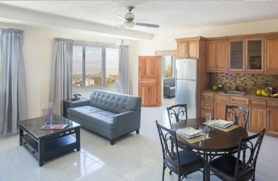 1 Bedroom Apartment For Rent. Petion-ville, Haiti